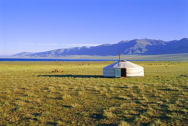 Nomad camp, Uureg Nuur Lake, Uvs, Mongolia