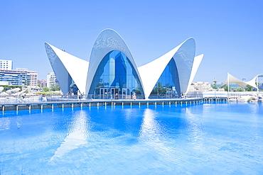 Oceanografic, City of Arts and Sciences, Valencia, Comunidad Autonoma de Valencia, Spain, Europe