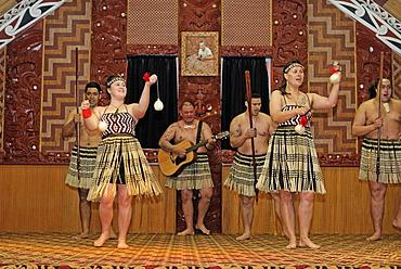 Maori dance performance, Te Puia, Rotorua, North Island, New Zealand, Pacific