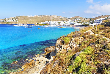 Platis Gialos beach, Mykonos, Cyclades Islands, Greek Islands, Greece, Europe