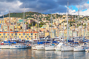 Historic district and Porto Antico (Old Port) view, Genoa, Liguria, Italy