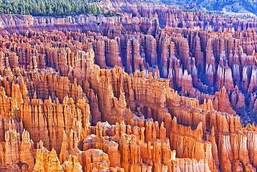 Bryce Canyon, Bryce Canyon National Park, Utah, USA