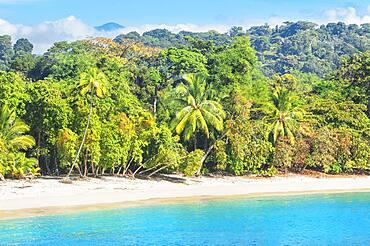 Tropical beach, Manuel Antonio National Park, Quepos, Costa Rica