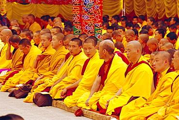 Monks sitting together inside Kargyupa gompa (monastery), Bodhnath, Katmandu, Nepal