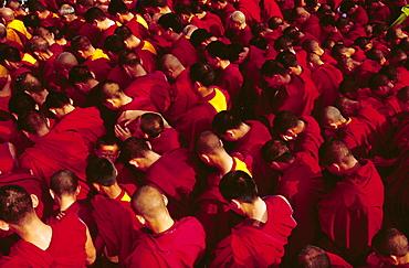 Buddhist monks praying during the celebration of Losar (Tibetan New Year), Bodhnath, Katmandu, Nepal