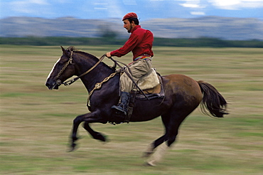 A gaucho riding his horse, Torres del Paine National Park, Patagonia, Chile, South America