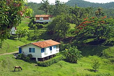 Typical bungalows in the mountain community and tourist centre of Las Terrazas, Sierra del Rosario Nature and Biosphere Reserve, UNESCO World Heritage Site, Cordillera de Guaniguanico, Pinar del Rio, Cuba, West Indies, Central America