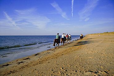 Conche des Baleines, horseriders on beach, Saint Clement village, Ile de Re, Charente Maritime, France, Europe