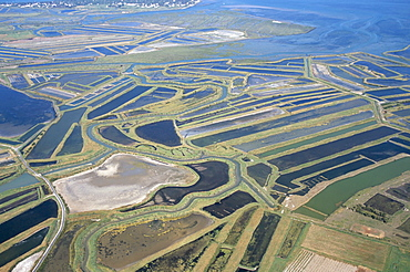 Aerial view of mud flats and salt marshes, Ile de Re, Charente Maritime, France, Europe