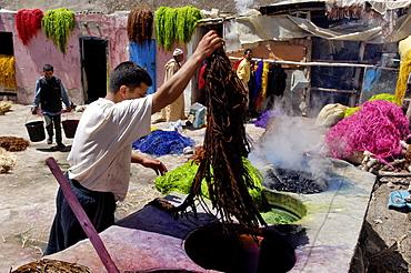 Dyer, medina, Essaouira, historic Mogador, Morocco, North Africa, Africa