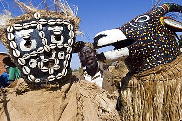 Senoufo masks at festivities, Loulouni Village, Sikasso area, Mali, Africa