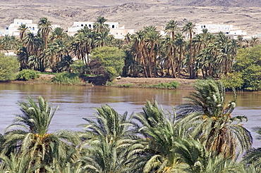 The oasis of Sesibi, founded in the XVIIIth dynasty, 3rd cataract of the River Nile, Nubia, Sudan, Africa