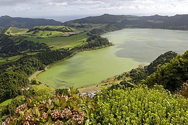 Furnas Lake, Sao Miguel Island, Azores, Portugal, Europe