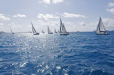 Sailboat regattas. British Virgin Islands, West Indies, Caribbean, Central America