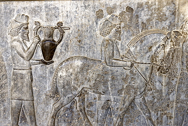 A bas-relief depicting Armenians bringing their famous wine to the king, the monumental stairs of the Apadana, Persepolis, Iran, Middle East