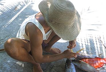 Fisherman and his catch, northeast coast, island of Praslin, Seychelles, Indian Ocean, Africa