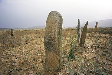 Stelae in ancient cemetery, Axoum (Axum) (Aksum), Tigre region, Ethiopia, Africa
