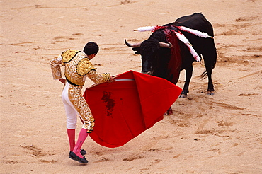 Bull fight, Quito festival, Ecuador 6 December. South America