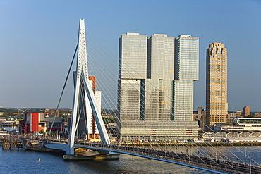 Erasmus Bridge, Rotterdam, The Netherlands, Europe