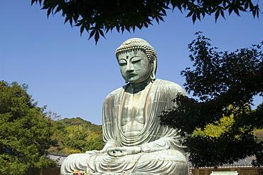 The Big Buddha statue, Kamakura city, Kanagawa prefecture, Japan, Asia