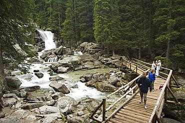 Obrovsky waterfall, High Tatras Mountains (Vyoske Tatry), Tatra National Park, Slovakia, Europe