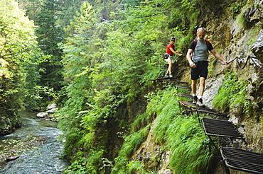 Hikers on steel ladders, Horad River Gorge Hiking Trail, Slovensky Raj, Paradise National Park, Slovakia, Europe