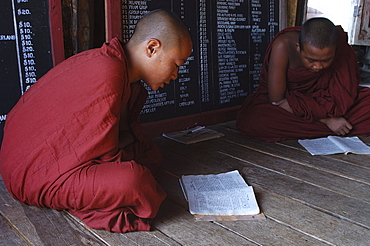 Trainee monk, monastery, Inle Lake, Shan State, Myanmar (Burma), Asia