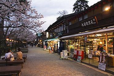 Spring cherry blossom at Kanazawa Castle, Honshu Island, Japan, Asia