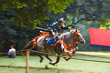 Horse Back Archery Competition (Yabusame), Harajuku District, Tokyo, Honshu Island, Japan, Asia