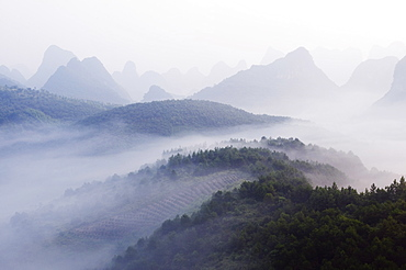 Early morning mist clinging to karst limestone scenery around Yangshuo, near Guilin, Guangxi Province, China, Asia
