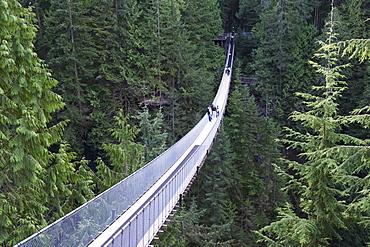 Tourists in Capilano Suspension Bridge and Park, Vancouver, British Columbia, Canada, North America