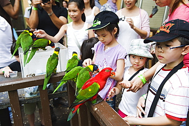 Children feeding parakeets in World of Parrots, KL Bird Park, Kuala Lumpur, Malaysia, Southeast Asia, Asia