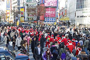 Christmas Santas walking across Shibuya crossing, Shibuya ward, Tokyo, Japan, Asia