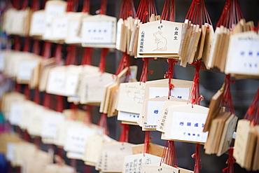 Good luck messages written on wooden prayer tablets, Shimogamo Shrine, Tadasu no Mori, Kyoto, Japan, Asia