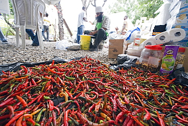 Chili peppers being used for cooking, food distribution with United Sikhs after the January 2010 earthquake, Port au Prince, Haiti, West Indies, Caribbean, Central America
