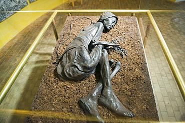 Preserved body of the Tollund Man, hung to death in 300 BC, Silkeborg Museum, Silkeborg, Jutland, Denmark, Scandinavia, Europe