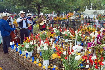 Mariachi group playing at a flower covered grave, Dia de Muertos (Day of the Dead) celebrations in a cemetery in Tzintzuntzan, Lago de Patzcuaro, Michoacan state, Mexico, North America