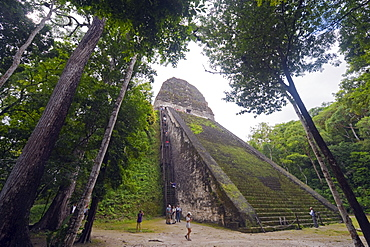 Tourists climbing a pyramid in the forest, Mayan ruins, Tikal, UNESCO World Heritage Site, Guatemala, Central America