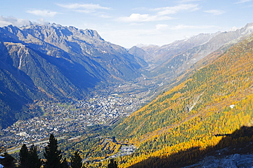 Autumn colours in Chamonix Valley, Chamonix, Haute-Savoie, French Alps, France, Europe