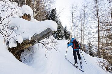Ski touring, Chamonix, Haute-Savoie, French Alps, France, Europe