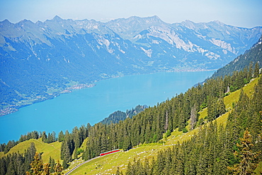 View of Lake Interlaken from Schynige Platte, Bernese Oberland, Swiss Alps, Switzerland, Europe