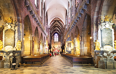 Cathedral of St. John the Baptist, Wroclaw, Silesia, Poland, Europe