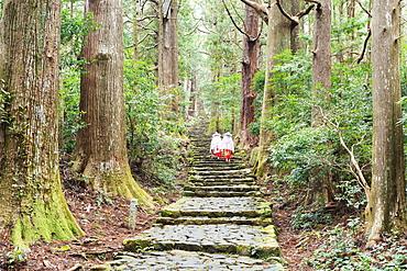 Pilgrims on Daimon-zaka Nachi Tokaido pilgrimage route, UNESCO World Heritage Site, Wakayama Prefecture, Honshu, Japan, Asia
