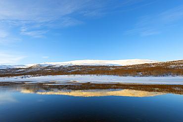Lake, Abisko National Park, Sweden, Scandinavia, Europe
