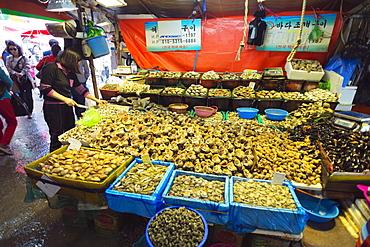 Shell fish, Incheon fish market, South Korea, Asia