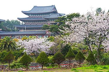 Yakcheonsa Buddhist temple, Seogwipo City, Jeju Island, South Korea, Asia