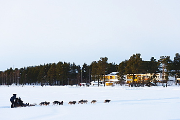 Dog sledding, Jokkmokk, Lapland, Arctic Circle, Sweden, Scandinavia, Europe