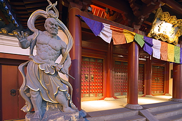 Guardian statue, Buddha Tooth Relic temple, Chinatown, Singapore, Southeast Asia, Asia
