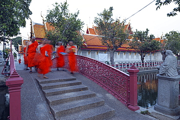 Monks in saffron robes, Wat Benchamabophit (The Marble Temple), Bangkok, Thailand, Southeast Asia, Asia
