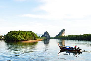Mangrove forest on Krabi estuary, Krabi, Thailand, Southeast Asia, Asia